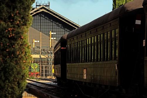 El Tren de la Fresa vuelve el 7 de septiembre